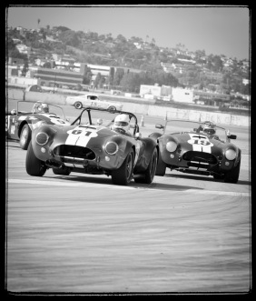 Shelbys at Coronado © timm eubanks