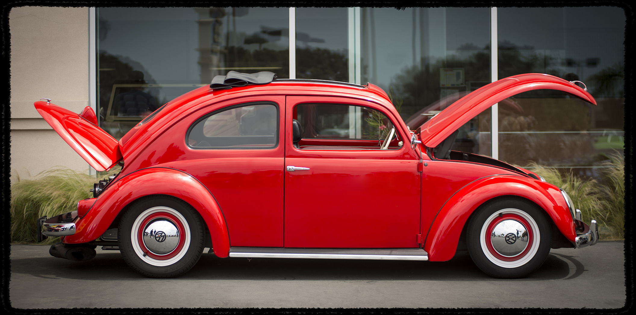 Preferred 1961 VW Beetle and other assorted Years | timm eubanks photography  MG24