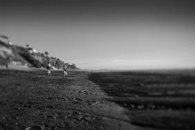 Beach Cruiser © timm eubanks